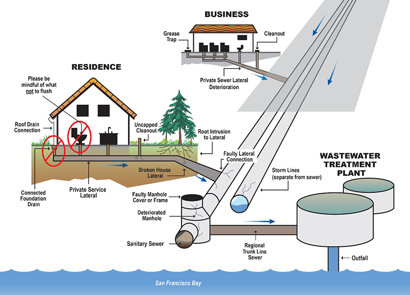 Illustration of damage to sewer system.